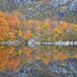 herfstkleuren, Noorwegen