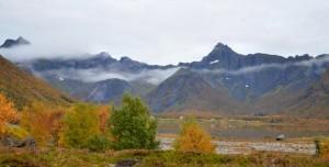 Herfstkleuren bij Laukvik, Lofoten, Noorwegen