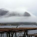 Reine, Lofoten, Noorwegen, Fru Amundsen