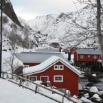 Nusfjord, Lofoten, Noorwegen